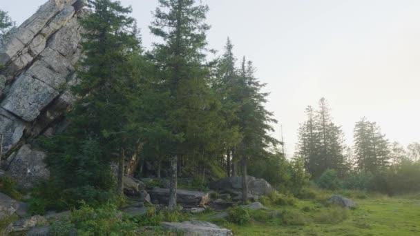Rock hegyi szikla és a kék ég, fák és erdők. Fenyő erdő