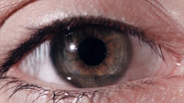 Oční zornice reakce na světlo. Lidé oční makro snímek s apple světlo flash oční reakce