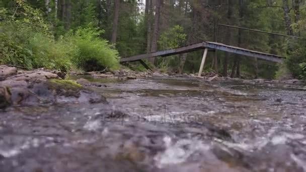 Cascade Falls, rychle tekoucí vodopád. Řeka teče pod dřevěným mostem v popředí