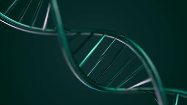 Animovaný řetězec Dna. Zelený řetězec DNA zpomalené - 3d animace
