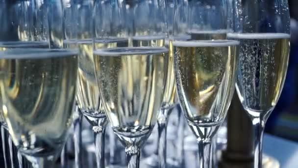 Sklenice šampaňského s velkou hloubkou ostrosti. Klip. Mnoho sklenku šampaňského. Mnoho sklenic na víno s cool lahodné šampaňské nebo bílého vína v baru. Alkohol pozadí