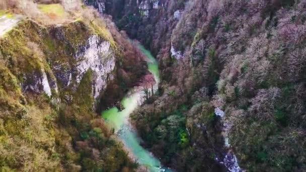 Horské řeky tekoucí krajiny. Klip. Letecká krásné horské říčky, řeky obklopené zelenými stromy s křišťálově čistou vodou, vinoucí se mezi horami