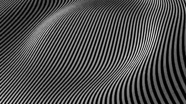 Černá a bílá abstraktní vlny na bílém pozadí - povrchové vyrobené z čar, horizontální pohyb - bezešvé smyčka. Tkáň zakřivené čáry. Čáry abstraktní pozadí