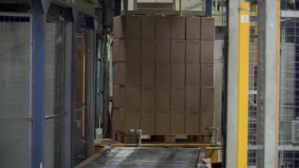 Transportbox in Bewegung auf Förderband, Ende der Linie. Clip. Transportband mit Kartons entlang des Korridors am Arbeitsplatz. Kartons auf einem Förderband in einer Fabrik