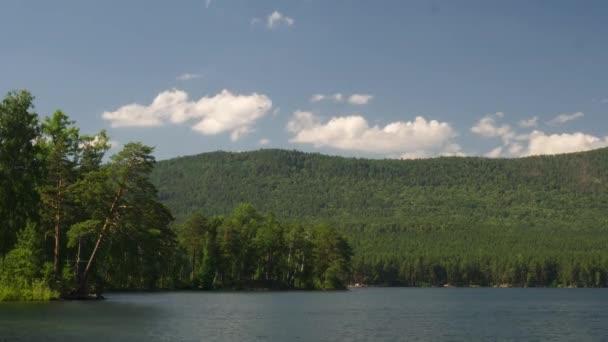 Letní přírody horské lesní jezero krajina, time-lapse. Timelapse z krásné zelené přírody, kvetoucí stromy vedle zelené přírodní jezero