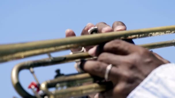 Detail of a mans hands playing a trumpet. Action. Close-up of a black mans hands playing the trumpet