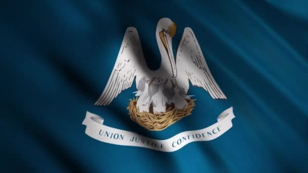Close-up of waving Louisiana flag. Animation. Animated background with blue flag waving in wind with image of Pelican and Chicks. Flags of States of America