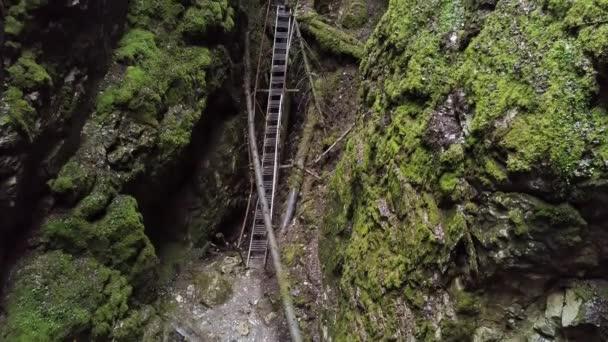 Nebezpečná stezka hlubokou soutěskou v zeleném lese v létě. Záběry ze skladu. Horní letecký pohled na strmé horské svahy pokryté zeleným mechem.