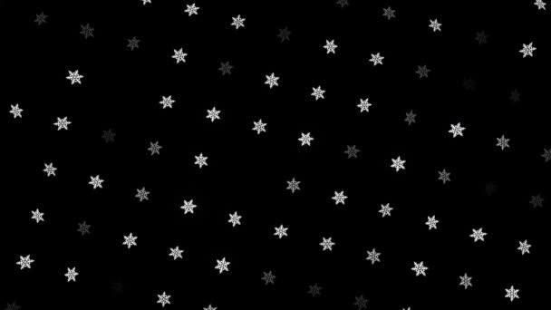 Gyönyörű fehér hópelyhek mozgó és forgó fekete háttér, zökkenőmentes hurok. Animáció. Sorok forgó karácsonyi hópelyhek, téli ünnepek koncepció, monokróm.