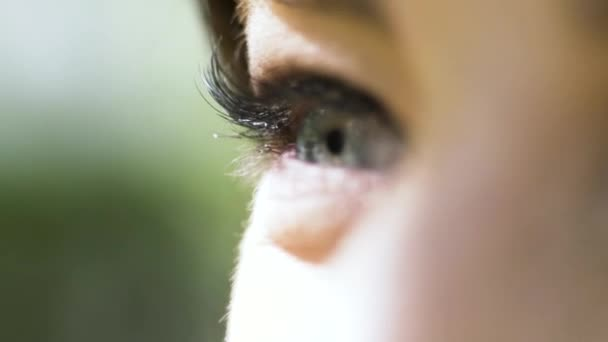 Beautiful female eye of green color with long eyelashes on blurred green background. Action. Close up of female eye under the bright sun outdoors.