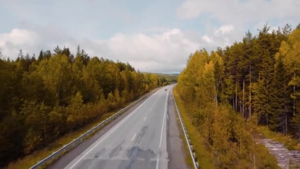 Top view of beautiful highway between woods. Stock footage. Beautiful road passing through forest area in autumn. Road trip with beautiful forest landscapes