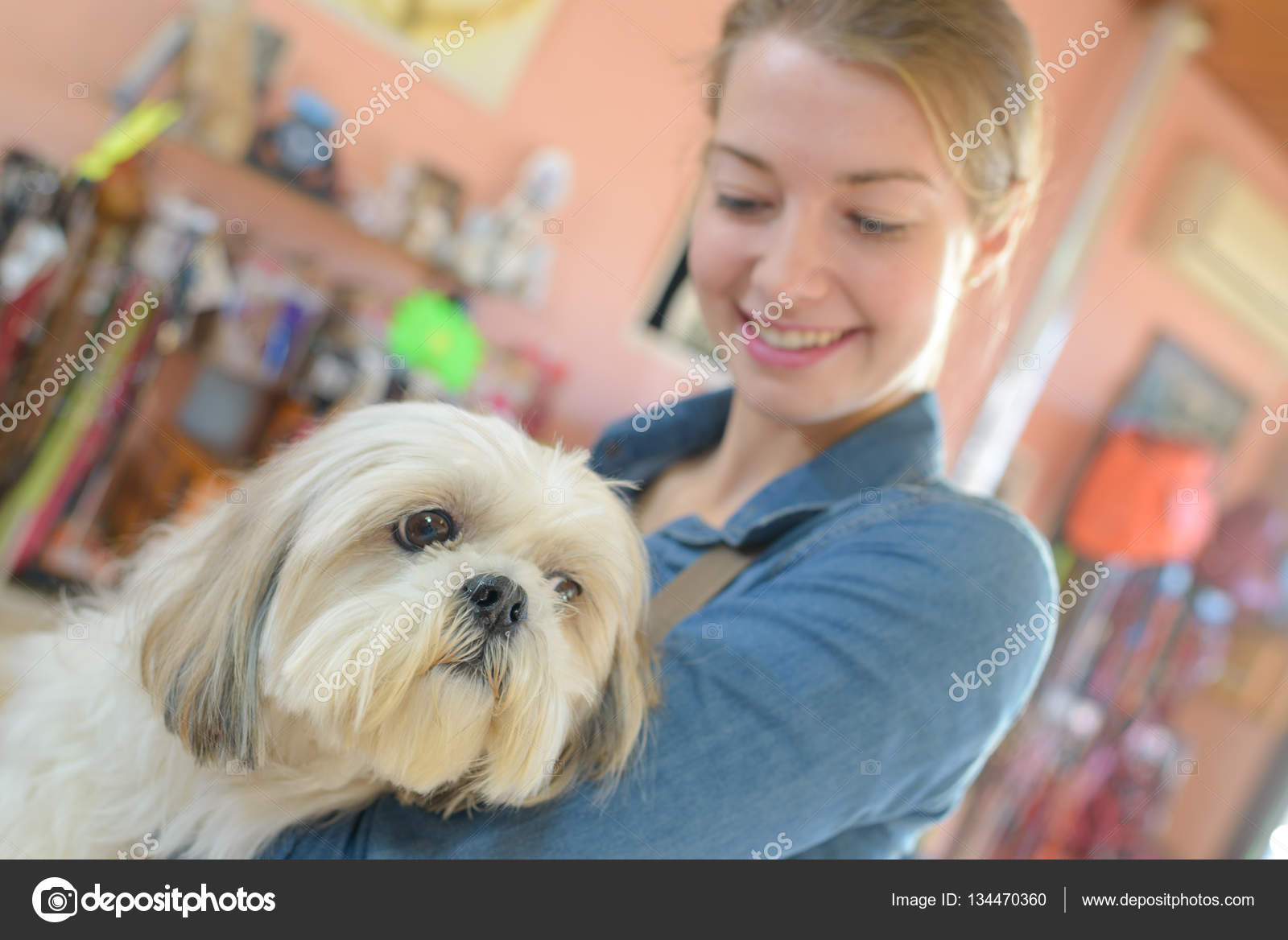 Cut Dog And Vet Assistant Stock Photo Photography33 134470360