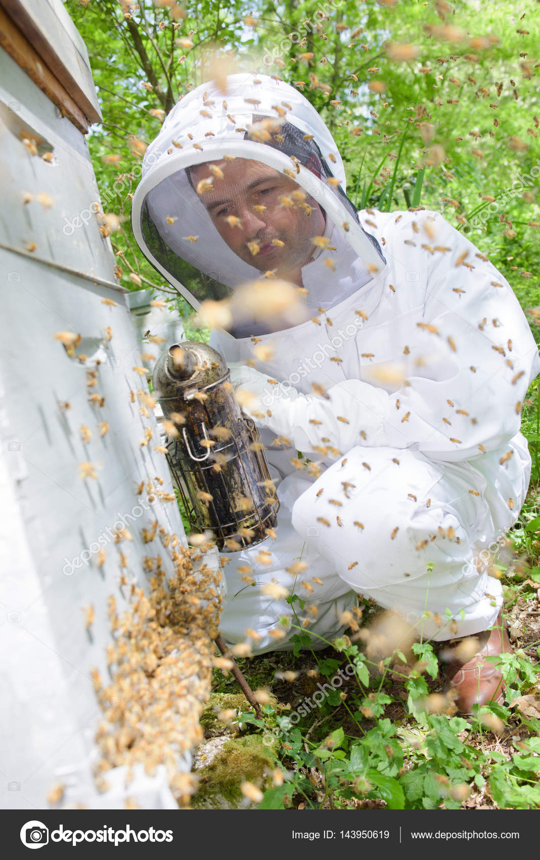 Beekeeper smoking the hive — Stock Photo © photography33 ...