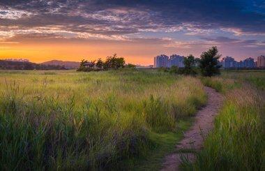 Beautiful landscape in South Korea,Sorae ecology wetland park stock vector