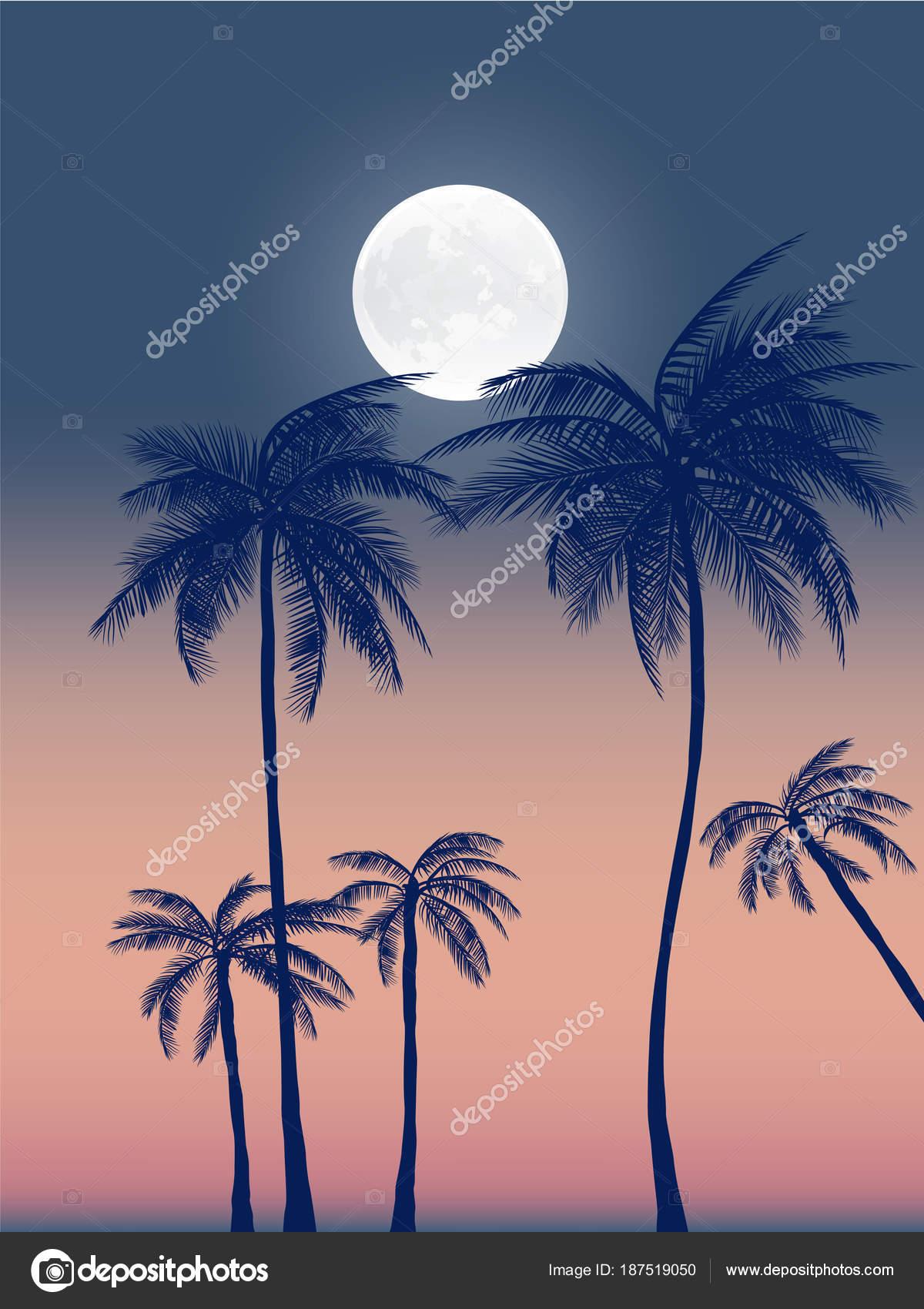 Zomer Californië Tumblr Achtergronden Instellen Met Palmen Sky