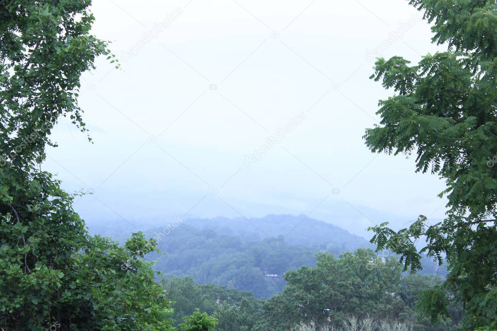 Skyline of the Smokey Mountains with Trees on Both Sides of the Frame