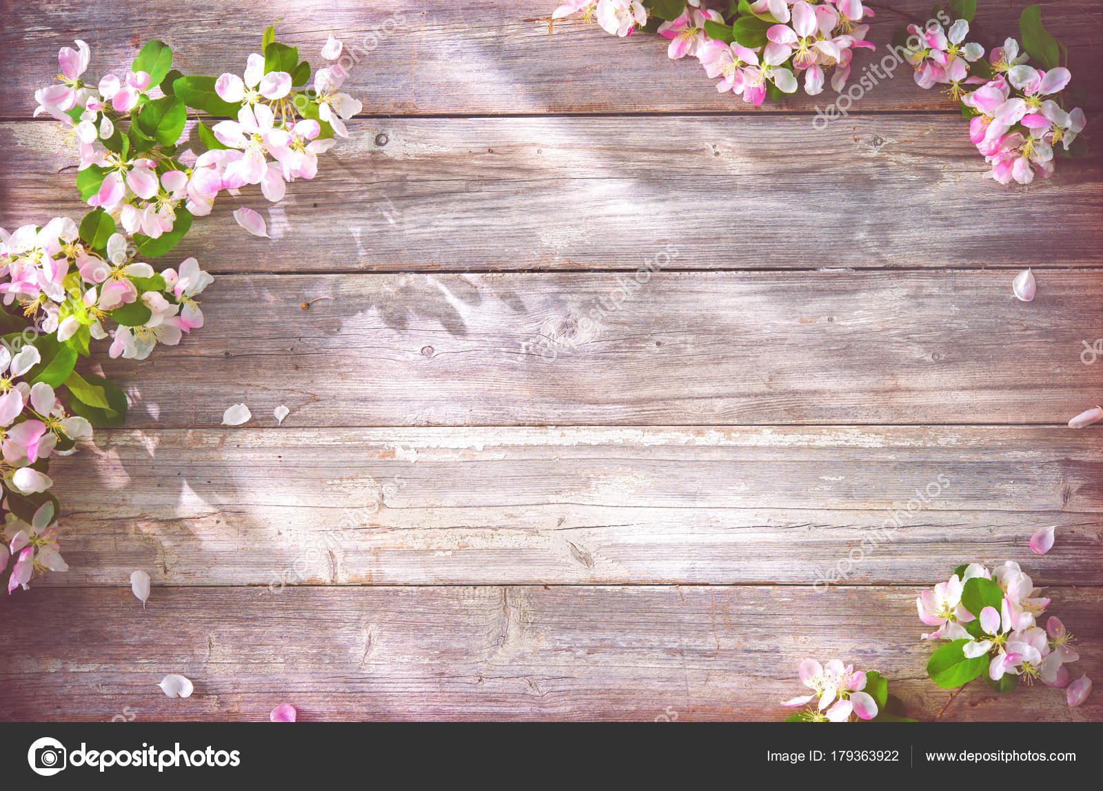 Primavera rami fioriti su fondo di legno foto stock - Rami decorativi legno ...