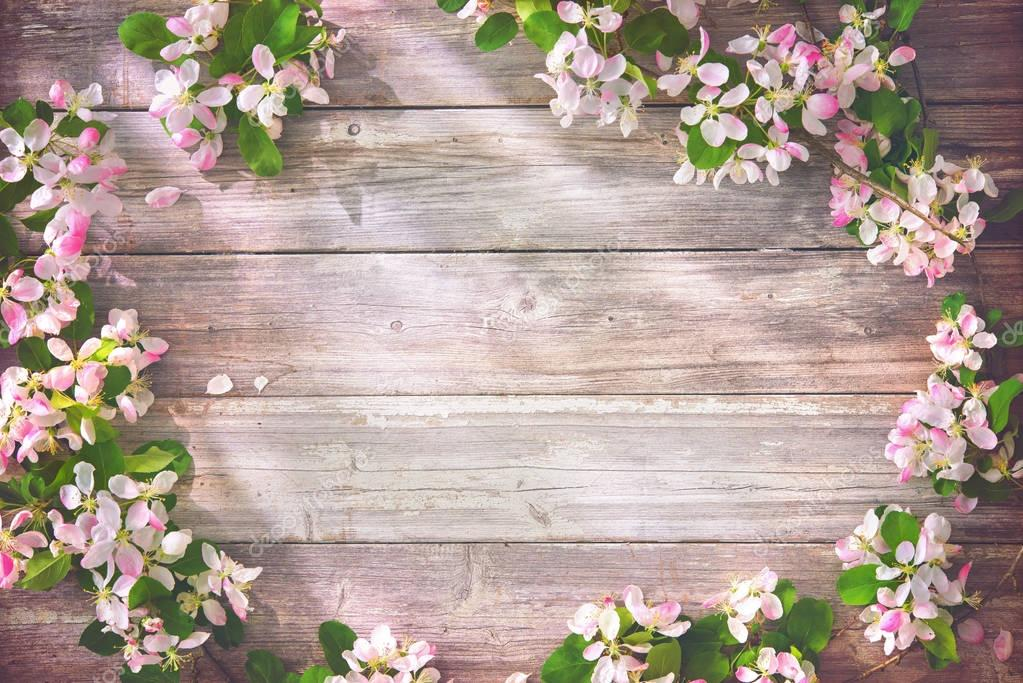 Spring blooming branches on wooden background