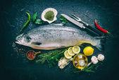 Čerstvý losos ryby s kořením na černý kámen