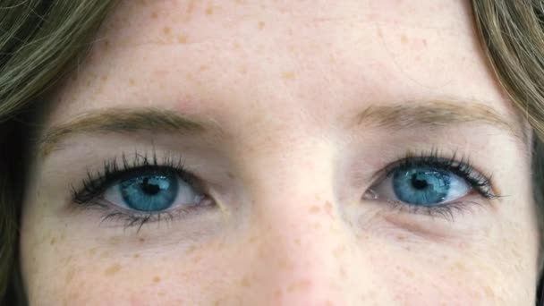 Zblízka modré oči mladé ženské tváře