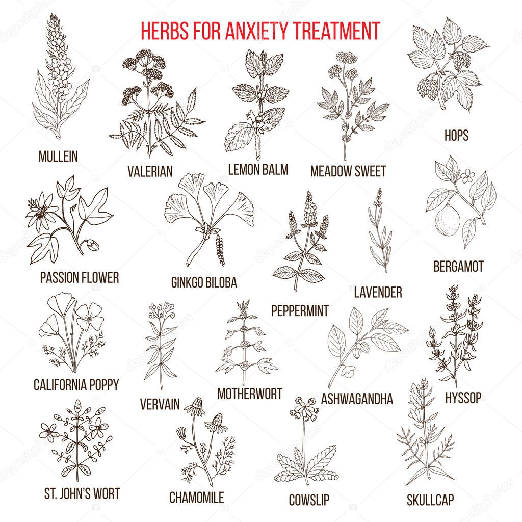 Collection of herbs for anxiety treatment