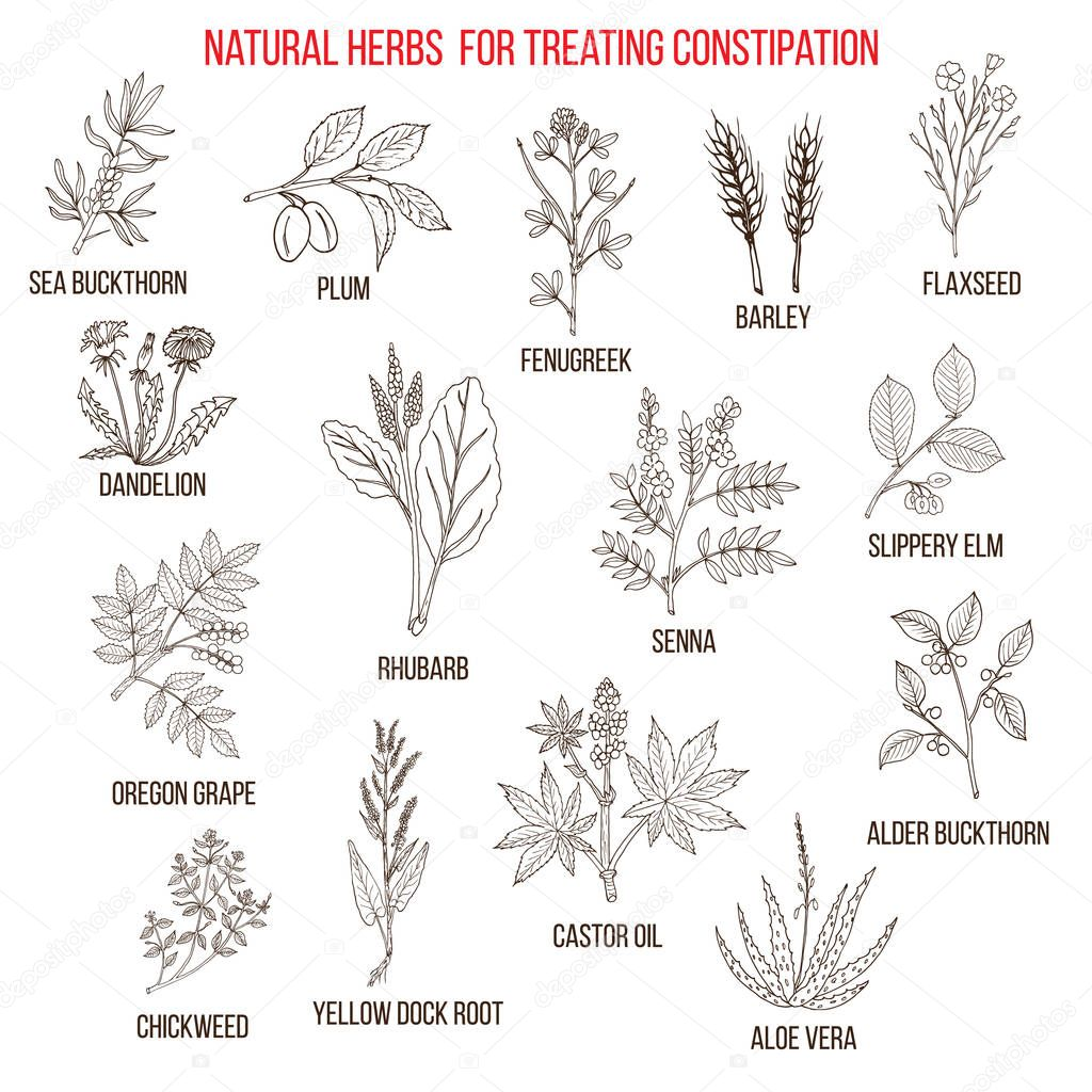 Best herbal remedies for treating constipation