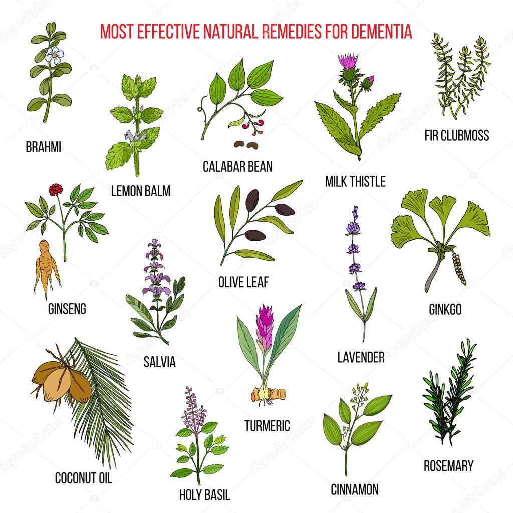 Best herbal remedies for dementia