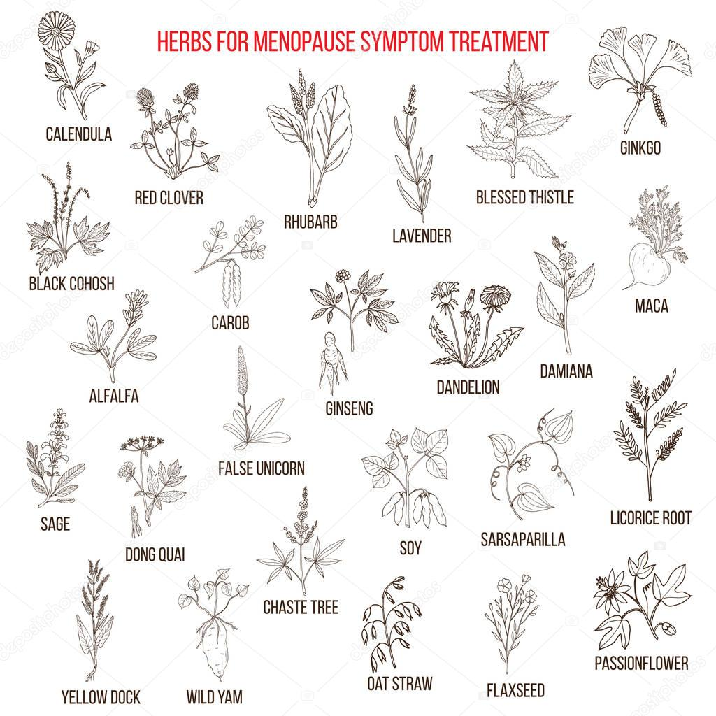 Best herbs for menopause symptom treatment