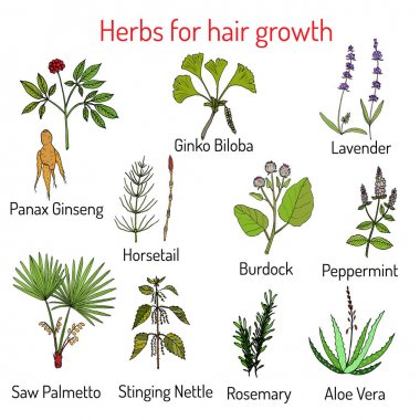 Natural hair care, herbs for growth
