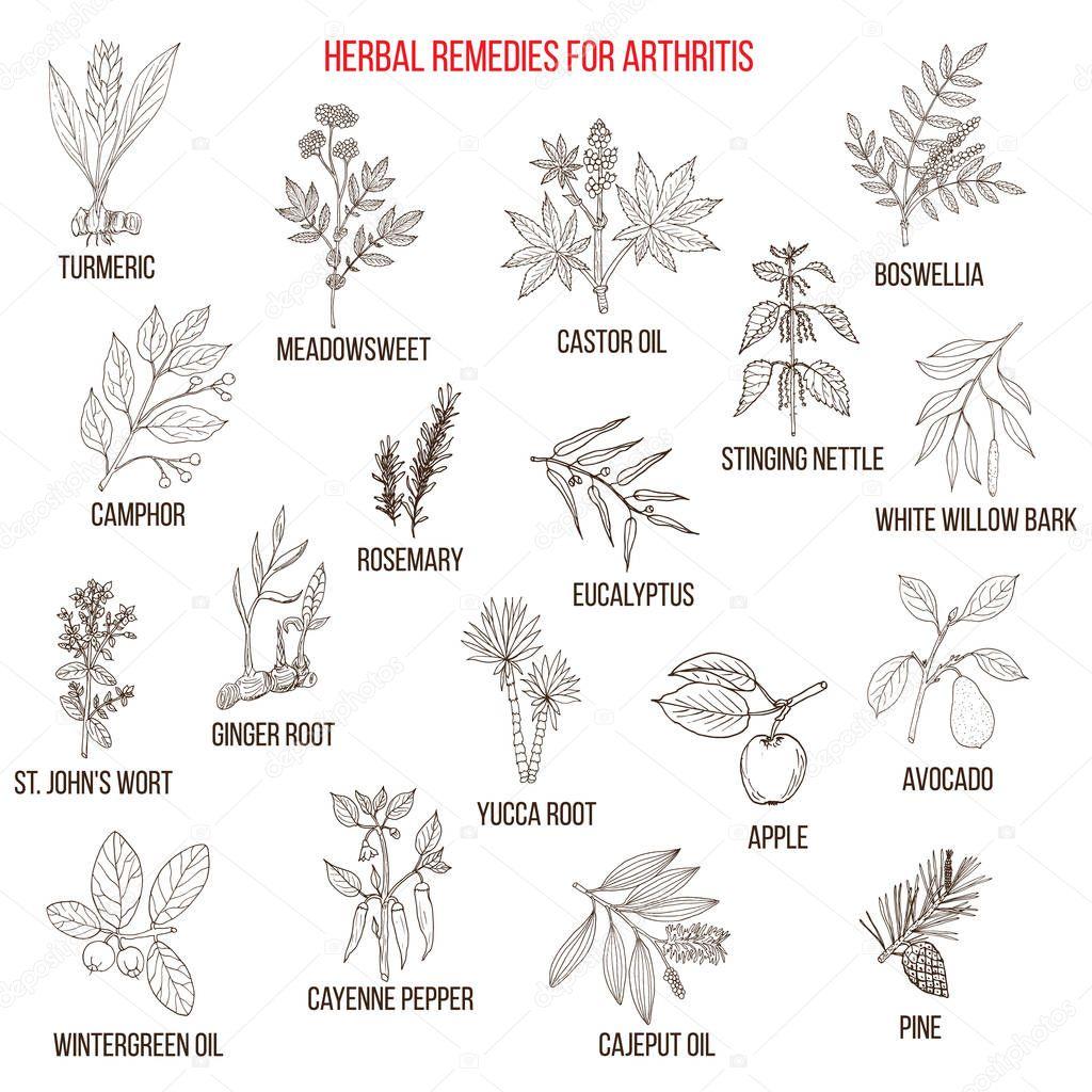 Best herbal remedies for arthriris
