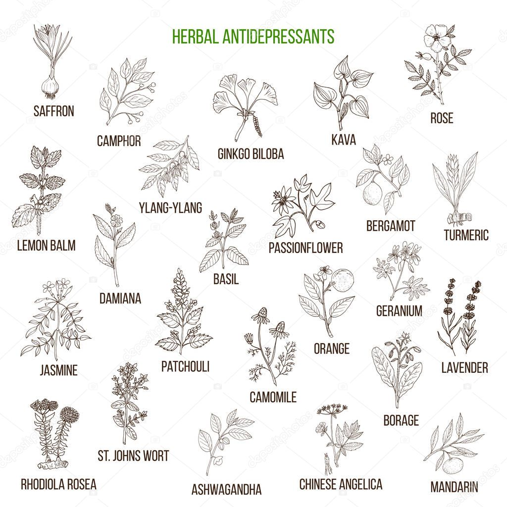 Best herbal antidepressants