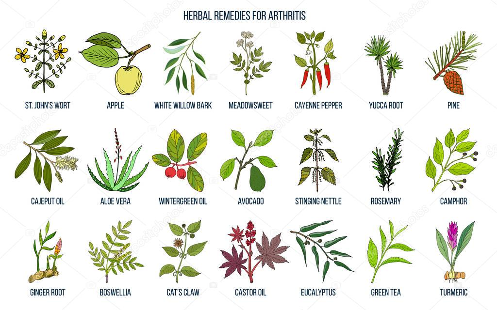Best herbal remedies for arthritis