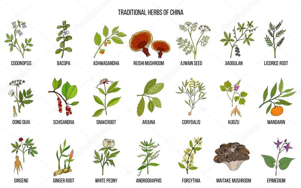Chinese traditional medicinal herbs