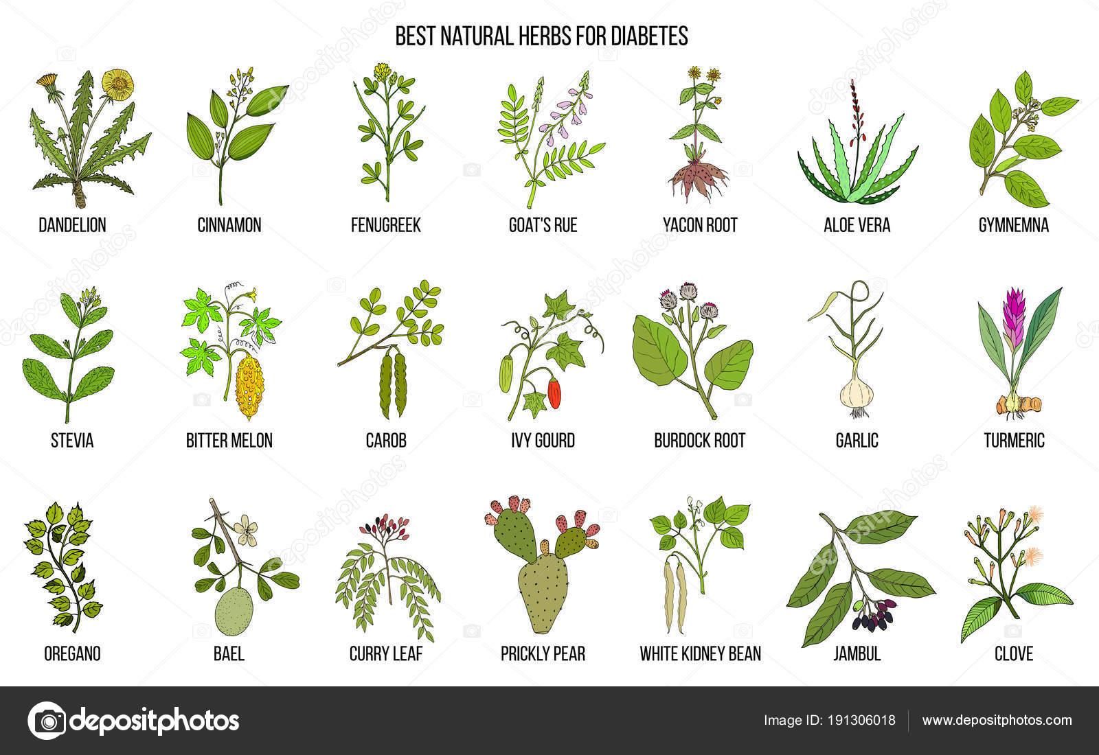 hierbas de mobsea para la diabetes
