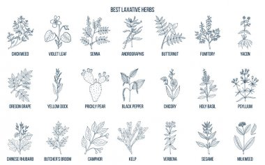 Best laxative herbs