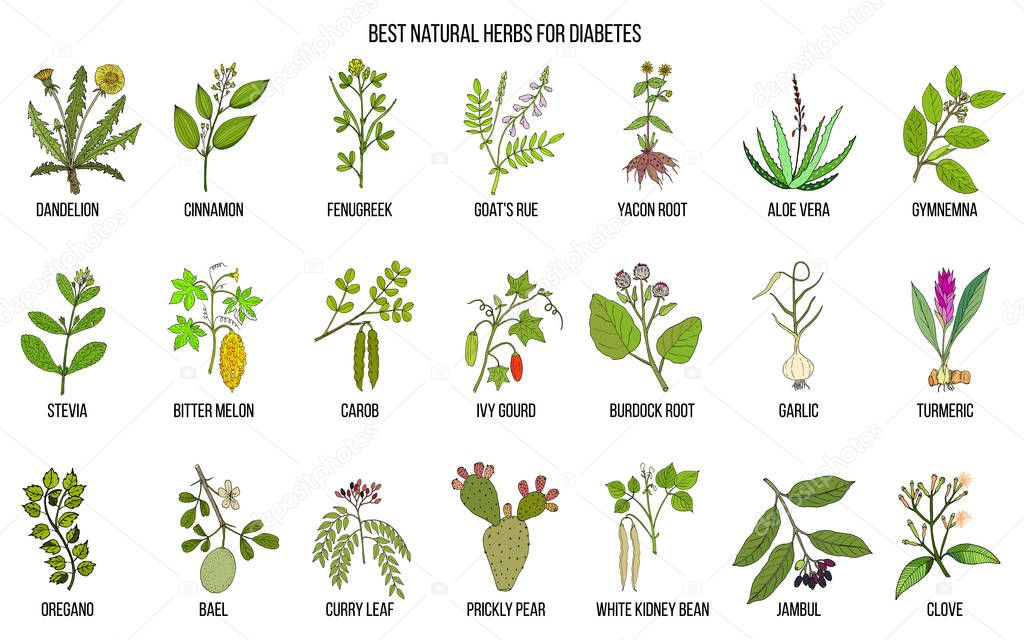 Herbs and spices that fight against diabetes