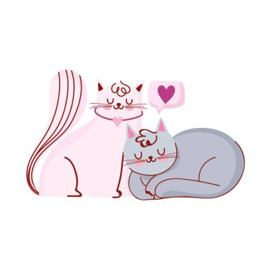 cute white and gray cats pets domestic cartoon love