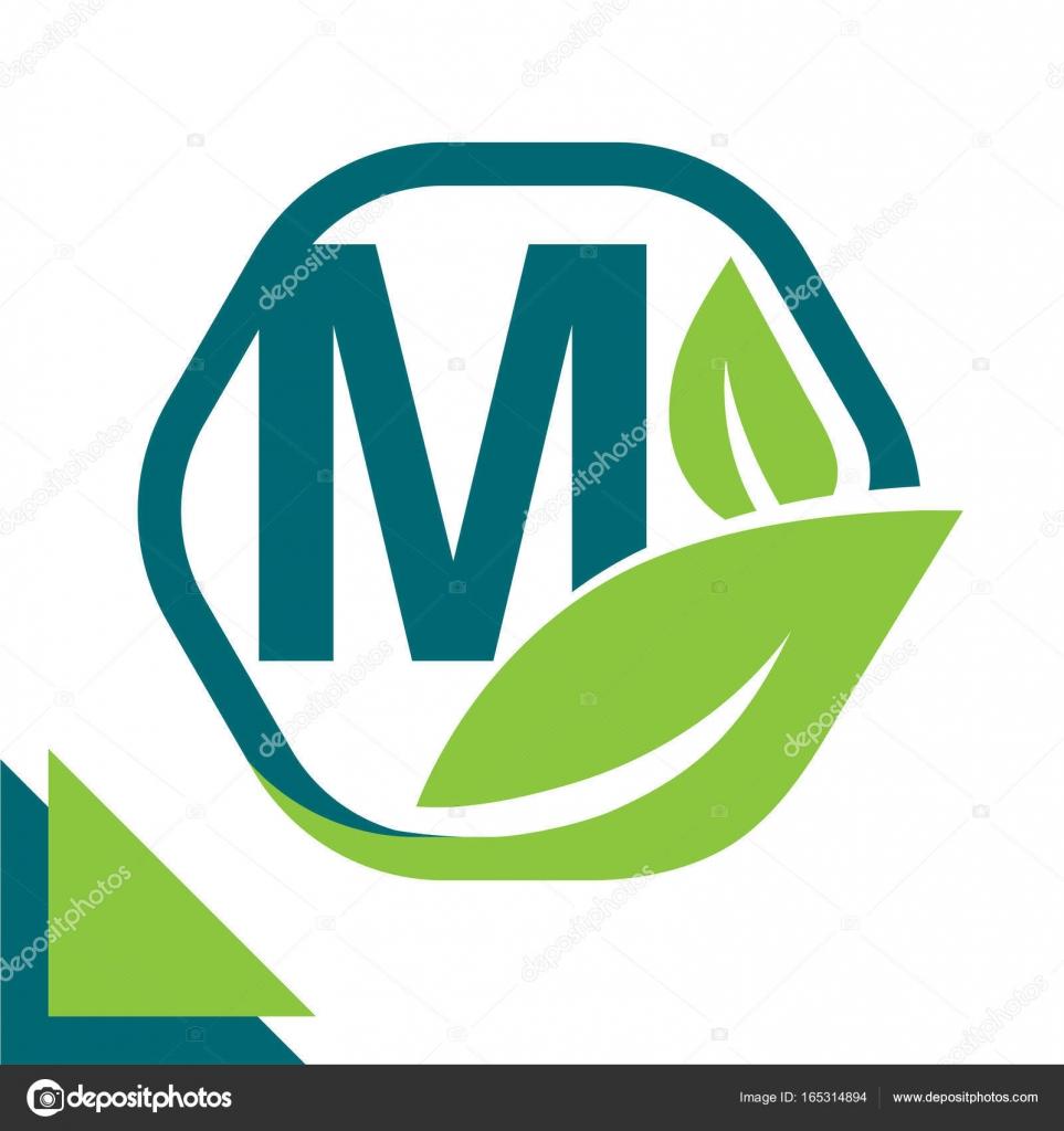Streszczenie Koncepcja Liść Ikona Logo środowisko Technologia