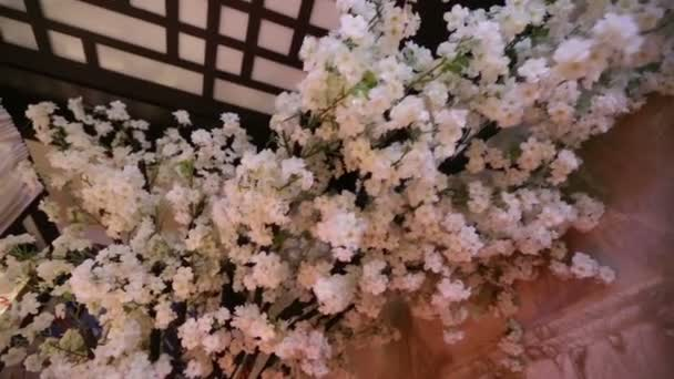 kvetoucí větve Sakura