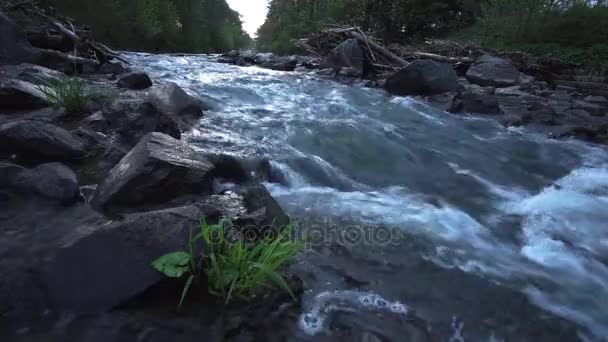 Pohyblivá řeka východ slunce. Idylické scény a zvuk vody. 50 fps