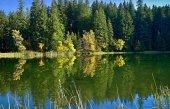 Fotografie Zrcadlení na hladinu vody Vrbicke tarn v Demänovské doliny na Slovensku