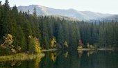 Fotografie Ostrov se stromy v podzimních barvách s pozadím Nízkých Tater. Jezeru Vrbicke v Demänovské doliny na Slovensku