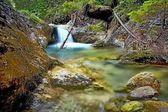 Acqua e pietre in un fiume di montagna nella valle di Juranova con una piccola cascata sullo sfondo