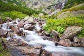 Lacqua di un fiume di montagna con le rocce e pino mugo vicino alla cascata Skok negli Alti Tatra. Bella Slovacchia