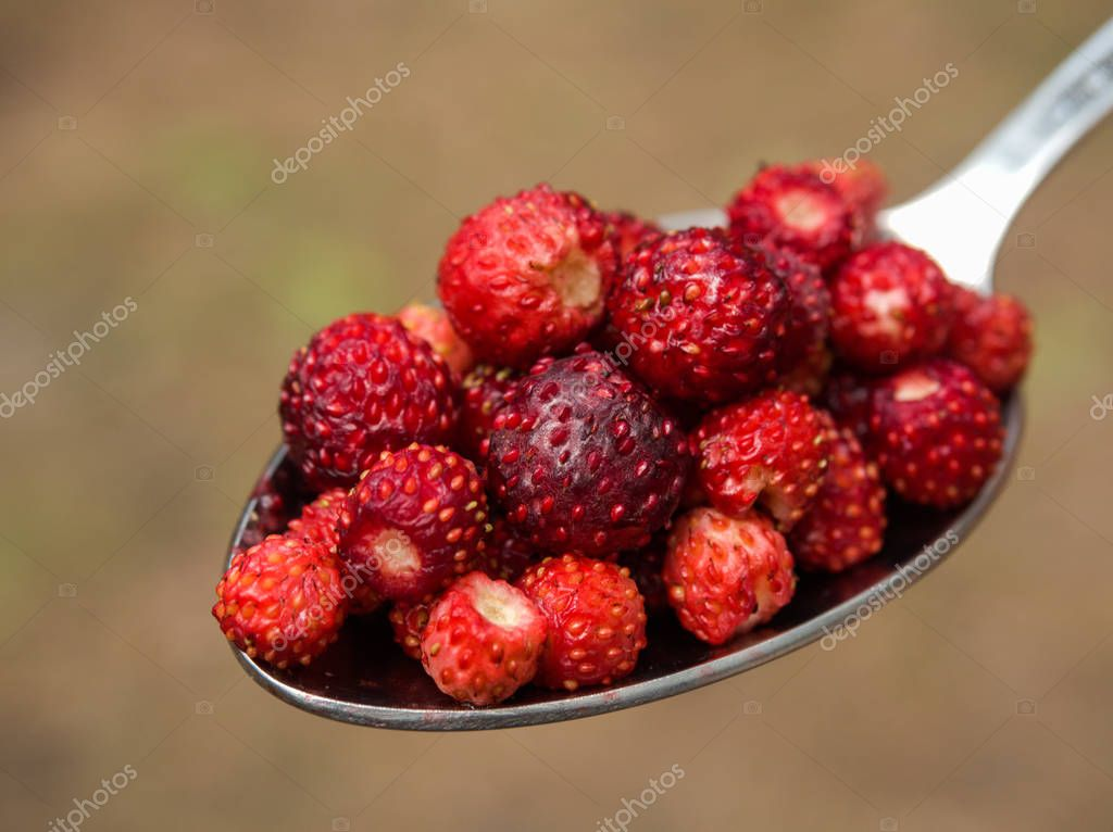 Tablespoon red strawberries closeu