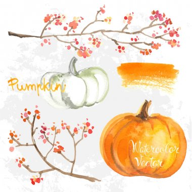 hand-drawn watercolor pumpkins