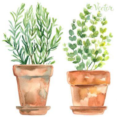 hand-drawn watercolor flowerpots