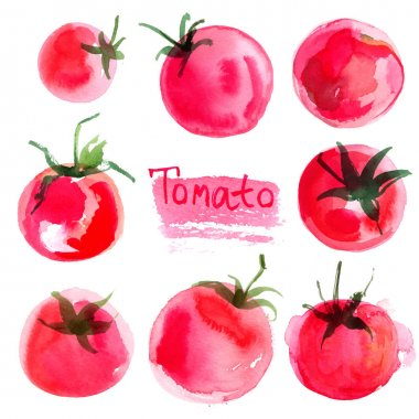 hand-drawn watercolor tomatoes set