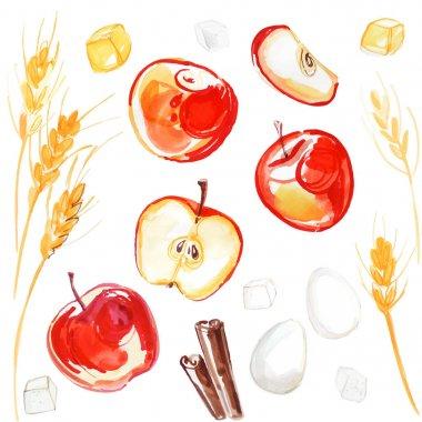 apples watecolor set