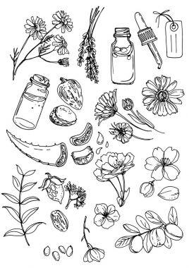 Natural cosmetics and medicine